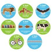 Social Distancing Floor Decals, Fun Fact Circles, Set of 8