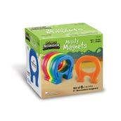 Horseshoe Magnets, Set of 6