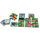 Clip-Itz Food Web Card Set, 1 Deck