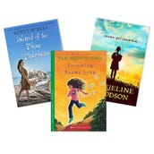 Reading Comprehension Point of View Book Collection (5 Books), Grades 4-5
