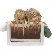 Root-Vue Farm®