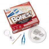 STEM at Play® BONES! Dissect Owl Pellets Kit