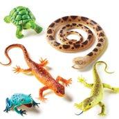 Jumbo Reptiles & Amphibians