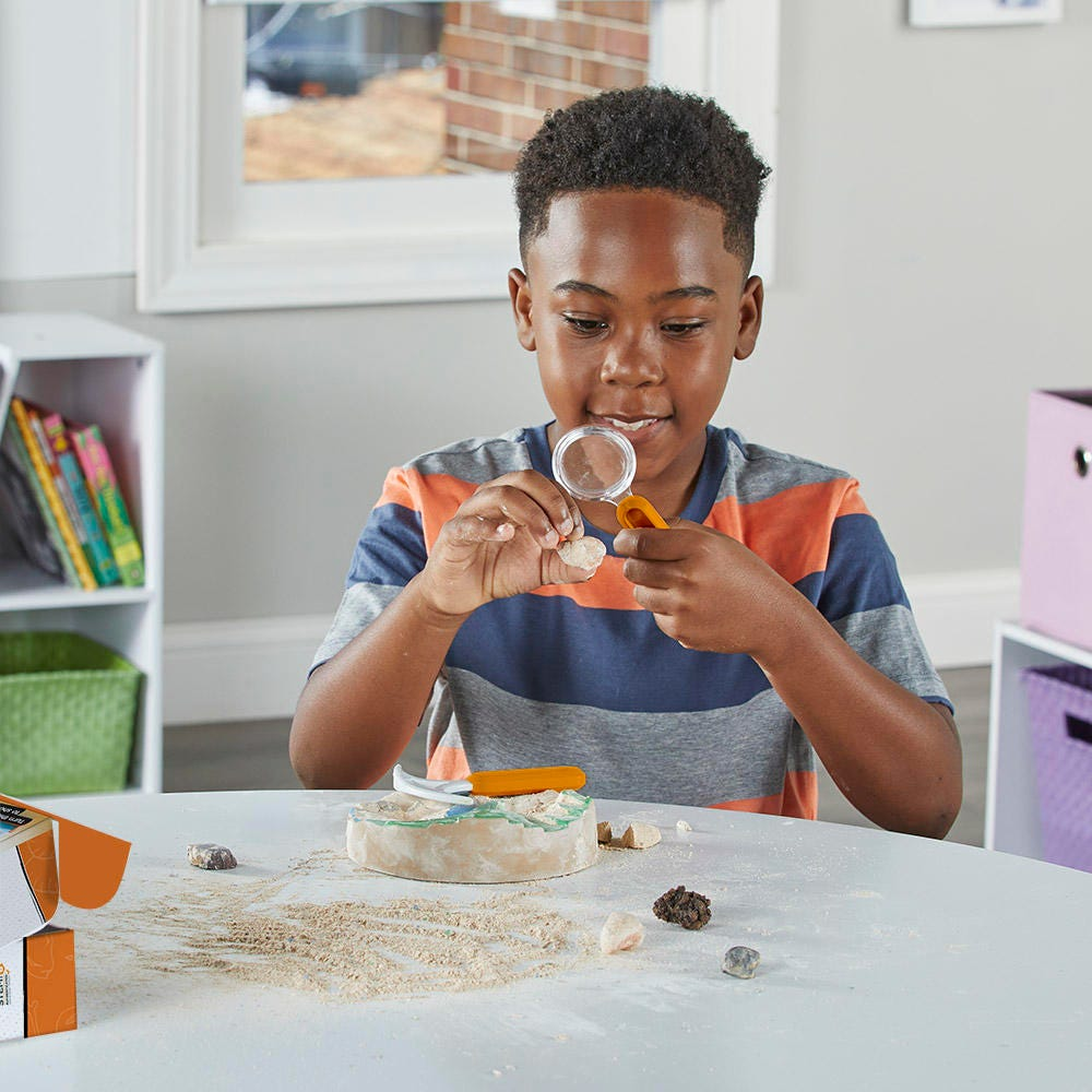 Child playing with Dig & Display Fossil Kit