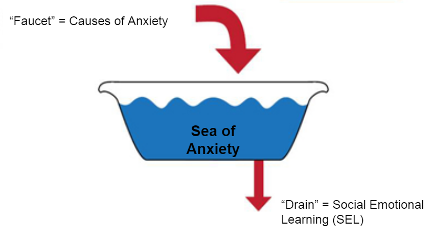 SEL Anxiety Diagram